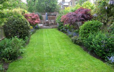 garden 1237x900